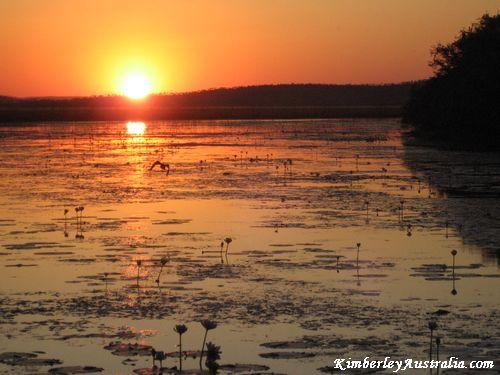 kimberley-sunset.jpg
