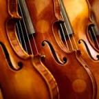 The Violin (English Version) Part 1